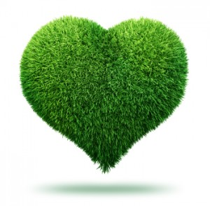 Heart of Grass